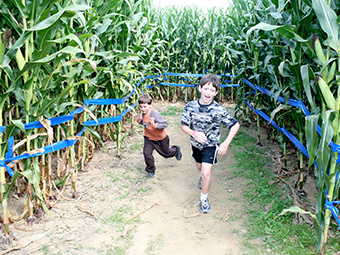 Corn Mazes and More